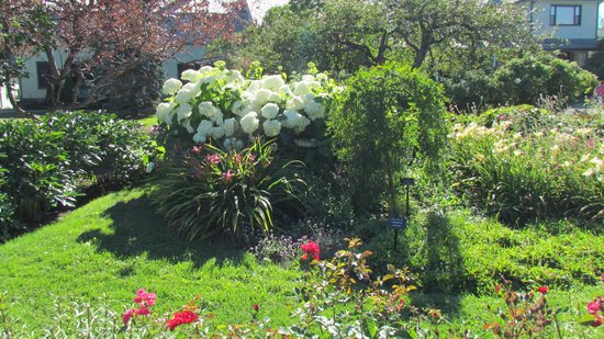 Jardins de Metis / Reford Gardens : Détente