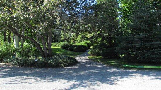 Jardins de Metis / Reford Gardens : Croisée de chemin