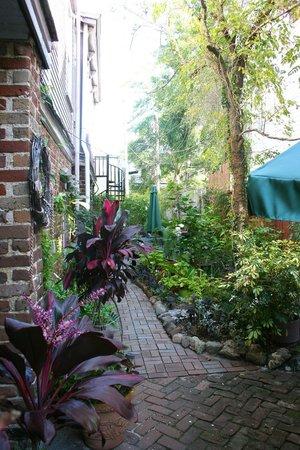 Amethyst Garden: Garden area