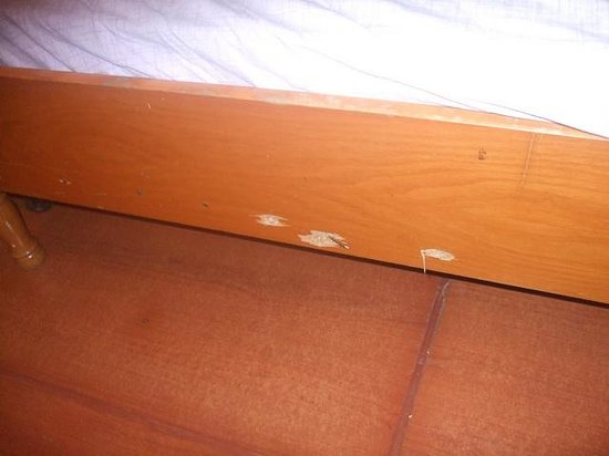 Anzac Wooden House : Bed support
