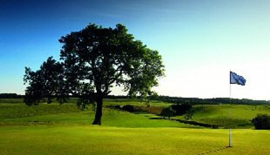 Forrester Park Golf and Resort: the 18th Green