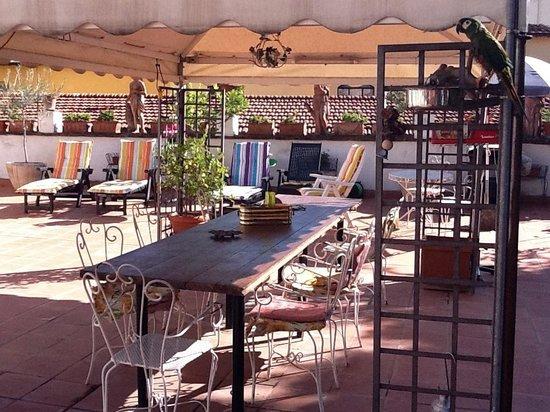 إل بارجيللينو: Terrace