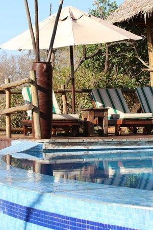 Tarangire Treetops: Pool