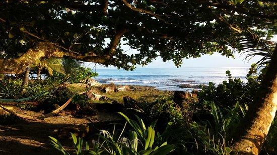 La Piscina Natural: View from the hammocks