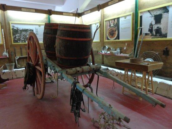 Cantina Albea winery and museum: Cantina Albea museum barrel cart
