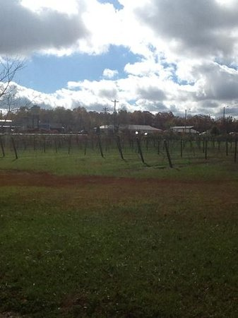 Monteagle Winery
