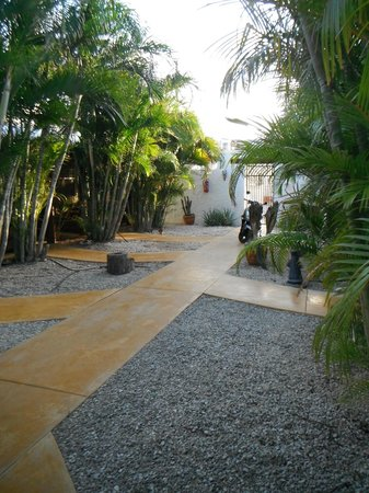BonaireFUN Appartments: buiten in de ommuurde tuin