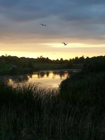Tymon Park: One of the lakes as the sun sets