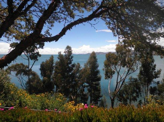 Hotel Isla Suasi: vista del lago Titicaca