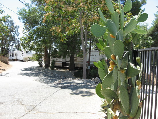 Country Hills RV Park : Coyote Lane Neighborhood