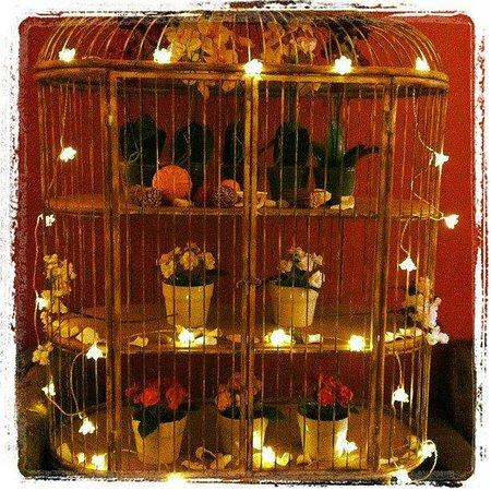 Adelaide Hostel: Birdcage