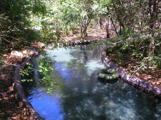 Hyatt Regency Hill Country Resort and Spa : The lazy river