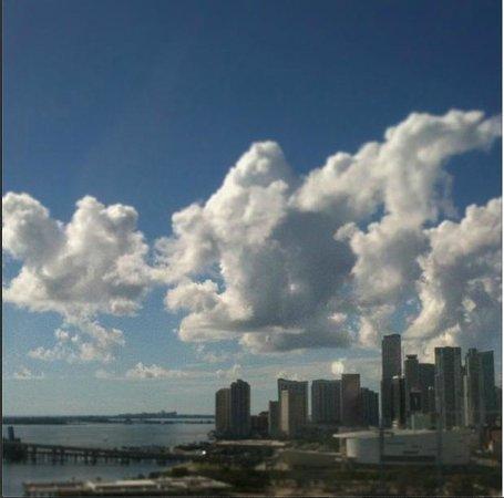 Hilton Miami Downtown: Vista do meu quarto