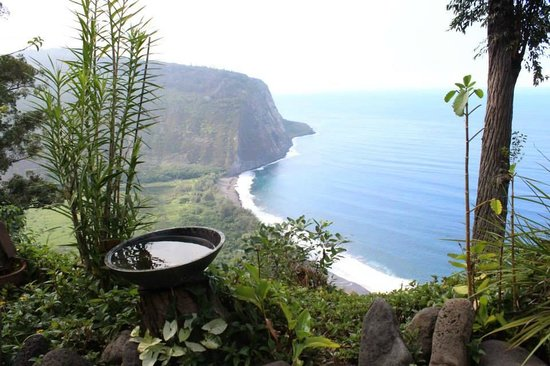 Waipio Rim: This is the view from in the yard.  The bird bath was frequented often by local birds!