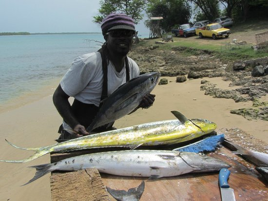 Pops Tours Tobago: Catch of the day
