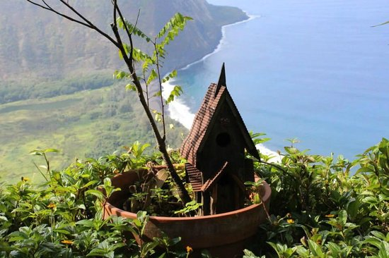 Waipio Rim: Another fun shot of the view from the yard below the room.