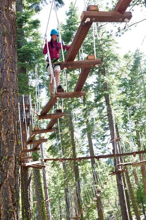 Tahoe Treetop Adventure Park: Offset Bridge - Fuzzy Bunny course