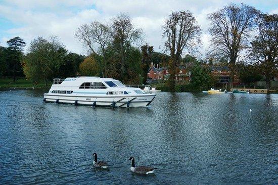 Premier Inn Reading (Caversham Bridge) Hotel: Thames River cruise