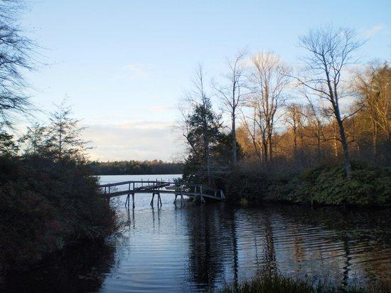 Crestmont Inn: Laurel path