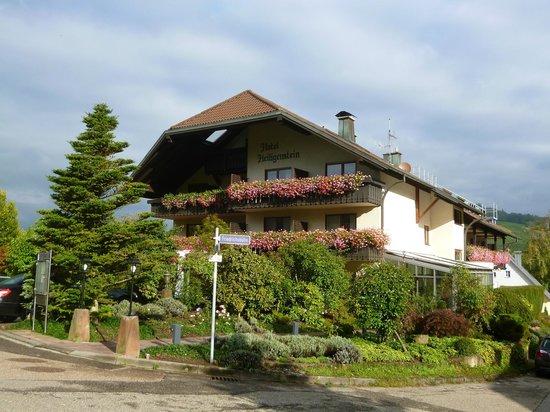 Hotel Heiligenstein: Exterior of hotel.