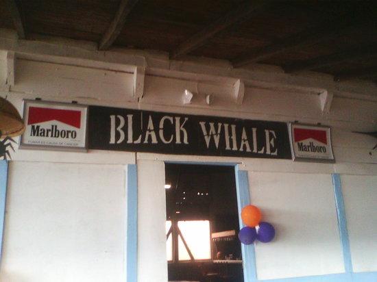 Black Whale Bar & Grill: Black Whale Sponsor Marlboro