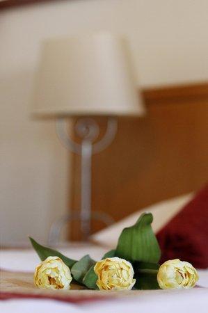 Gostisce Tulipan : Soba