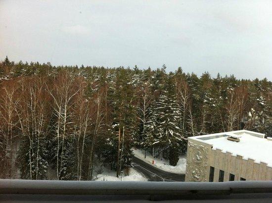 Bor Hotel Complex: Вид из окна