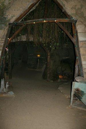 Les Caves de la Genevraie: Les caves troglodytes