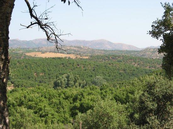 Agriturismo La Quercia: vista del territorio circostante