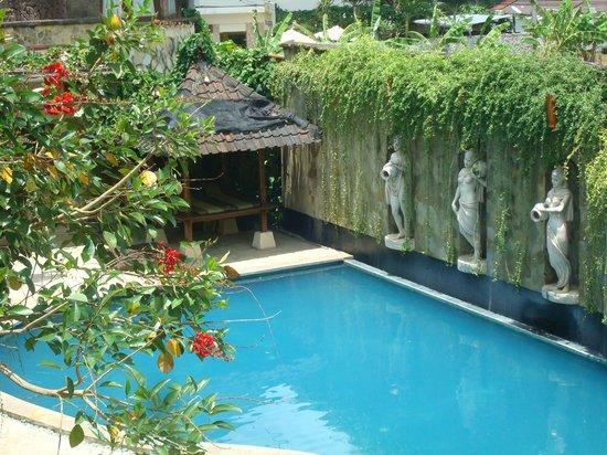 Dewani Villa : pool view from room 102