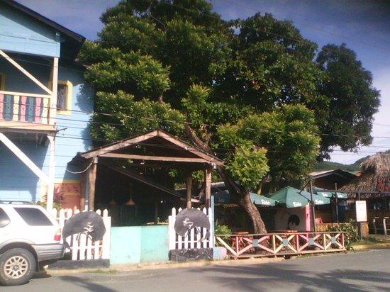 Black Whale Bar & Grill: Entrada