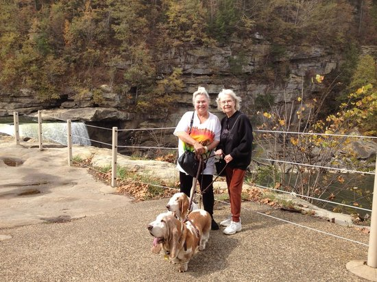 Cumberland Falls State Resort - Dupont Lodge : There are wonderful dog friendly walking paths all around the falls!