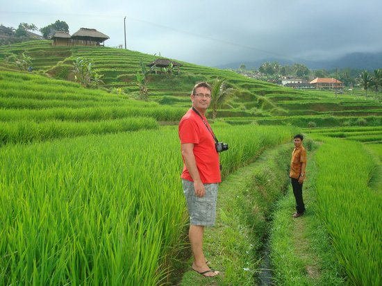 Dewani Villa: jalawata rice paddies with Ade our driver