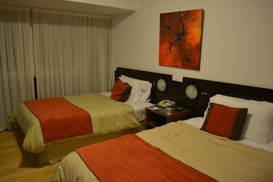 Regente Palace Hotel: Habitación