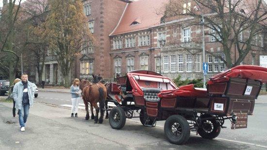 Hotel Focus Szczecin: Street view nearby