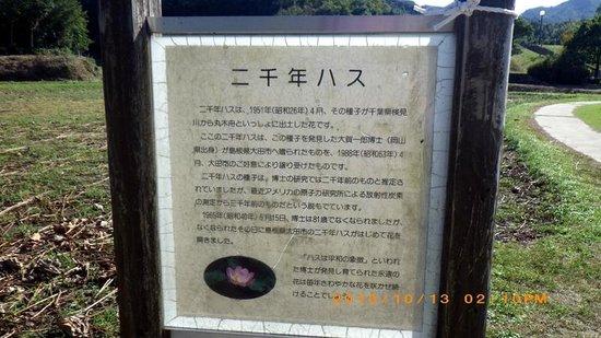 Kojindani Ruin