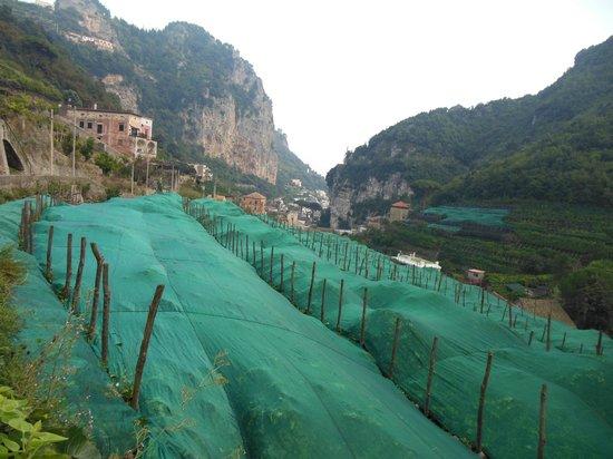 Valle dei Mulini : Veduta verso la costa di Amalfi