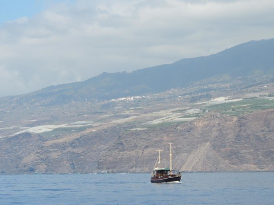 Fancy II Whale Watching: La Palma seen from sea