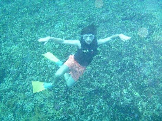 Tubakula Beach Bungalows : Snorkelling