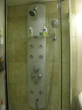Brass Key Guesthouse: Way too complicated shower in Rm 101, Captains House. Tiny too!