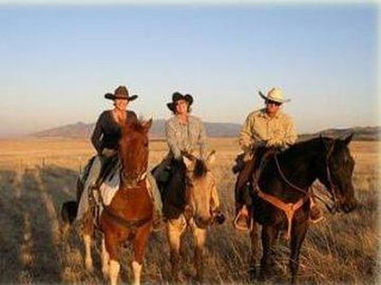 Xanadu Ranch GetAway / Private Guest Rooms / Guest Ranch & Horse Motel : Horsebackriding