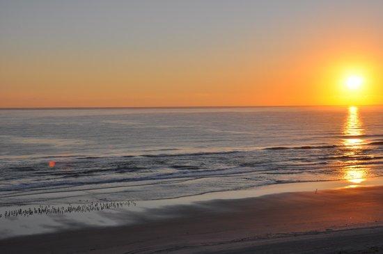 Hampton Inn Daytona Shores - Oceanfront : Sun Rise
