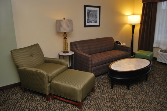 Best Western Plus Glenview-Chicagoland Inn & Suites: King Suite
