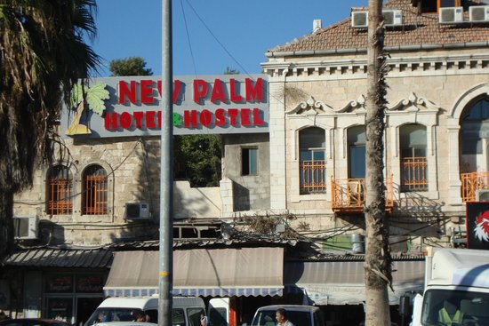 New Palm Hotel & Hostel : Palm Hostel