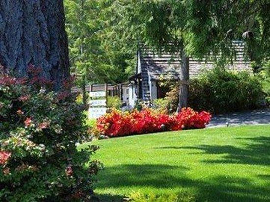Robin Hood Village Resort : Lawn