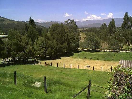 Granja El Milagro - Cabanas Campestres: Vista desde la habitacion