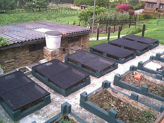 Granja El Milagro - Cabanas Campestres: Camas para Lombricultura