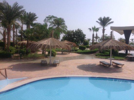 Nuweiba Coral Resort: Gardens and sunshades