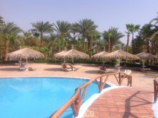 Nuweiba Coral Resort: Pool and sunshades