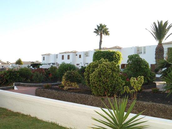 Royal Tenerife Country Club: Espaces verts communs vus depuis l'appartement